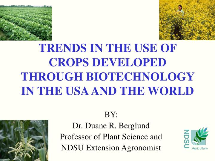 trends in the use of crops developed through biotechnology in the usa and the world n.