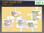 clalit health dw subject areas
