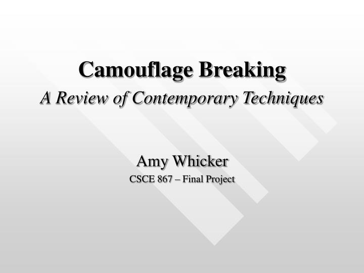 camouflage breaking a review of contemporary techniques n.