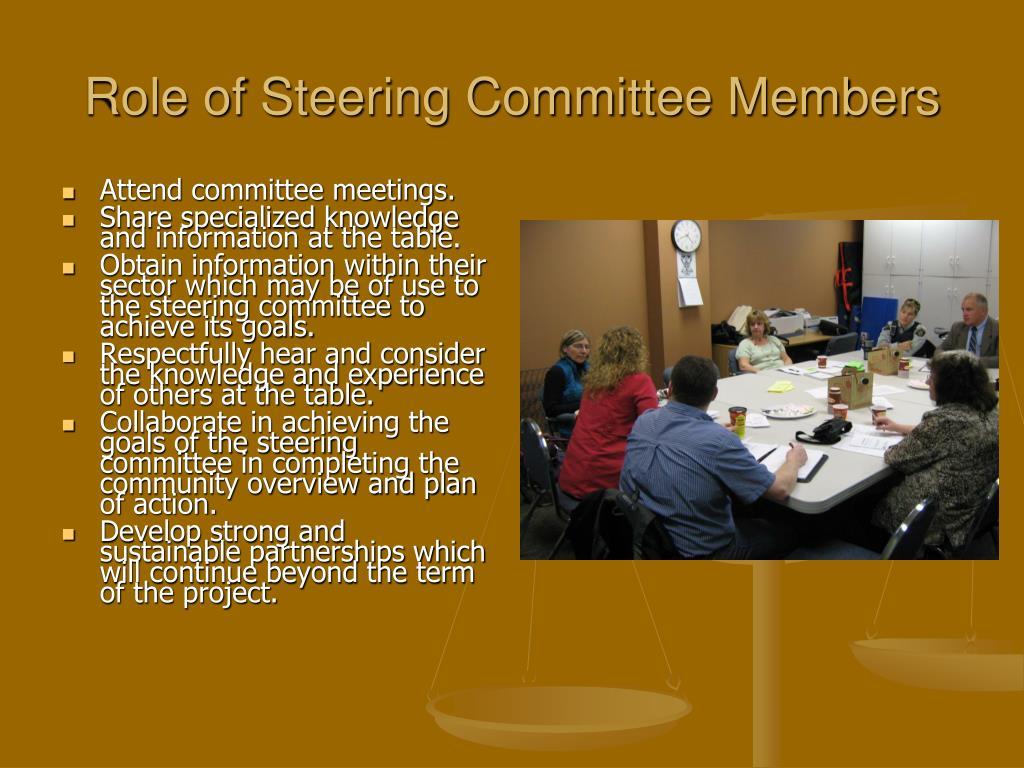 Role of Steering Committee Members