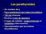 les parathyro des