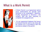 what is a work permit