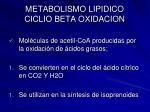 metabolismo lipidico ciclio beta oxidacion