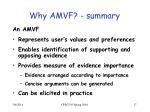 why amvf summary
