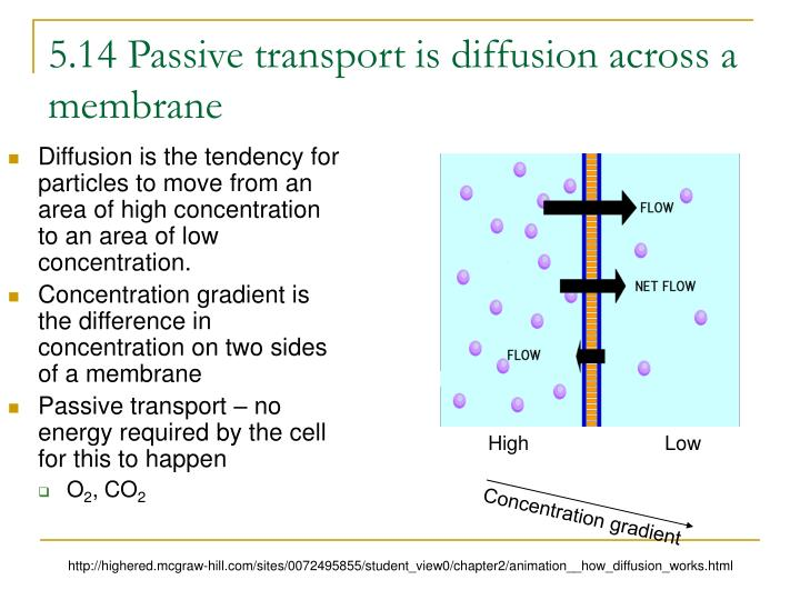 5 14 passive transport is diffusion across a membrane n.