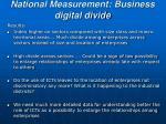 national measurement business digital divide