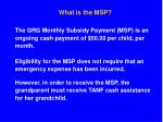 what is the msp