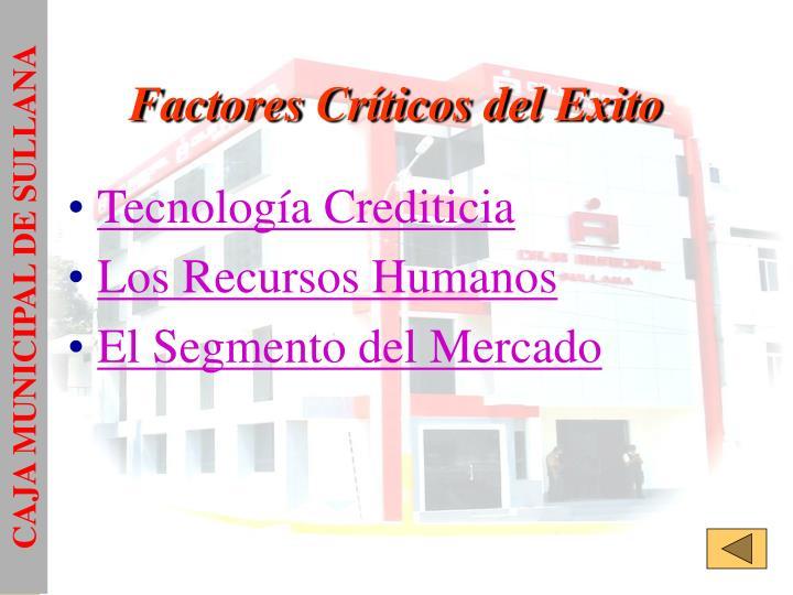 Factores Críticos del Exito
