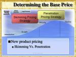 determining the base price8