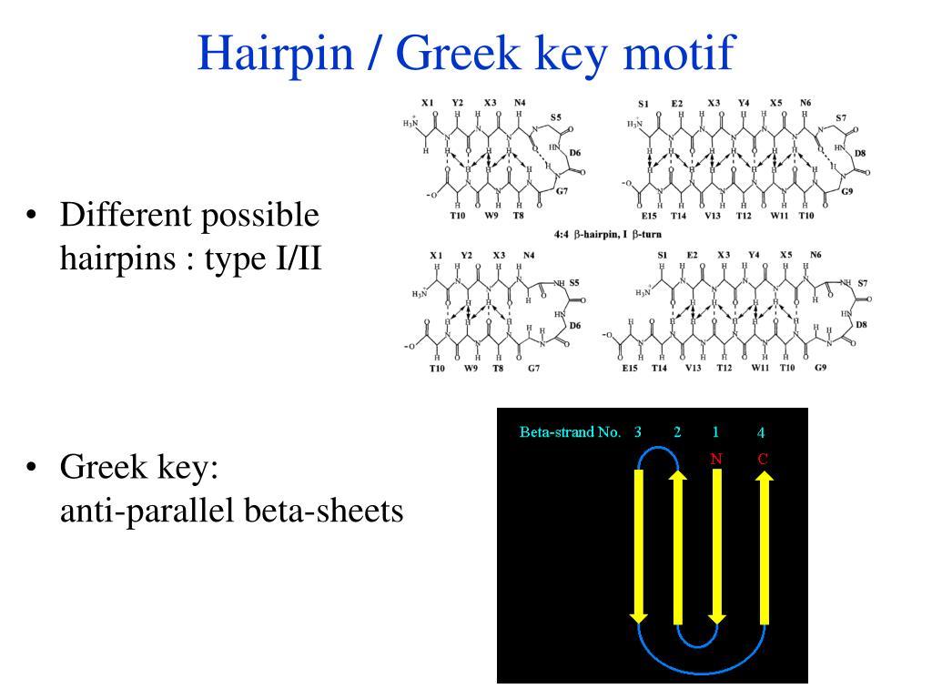 Hairpin / Greek key motif