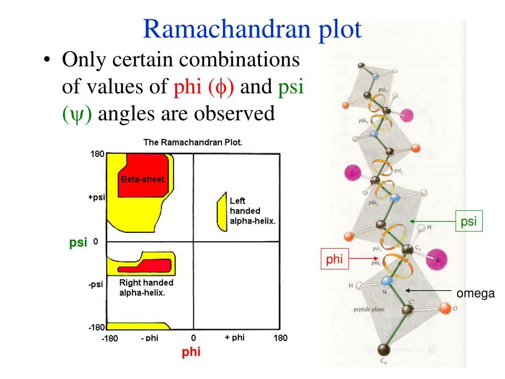 Ramachandran plot