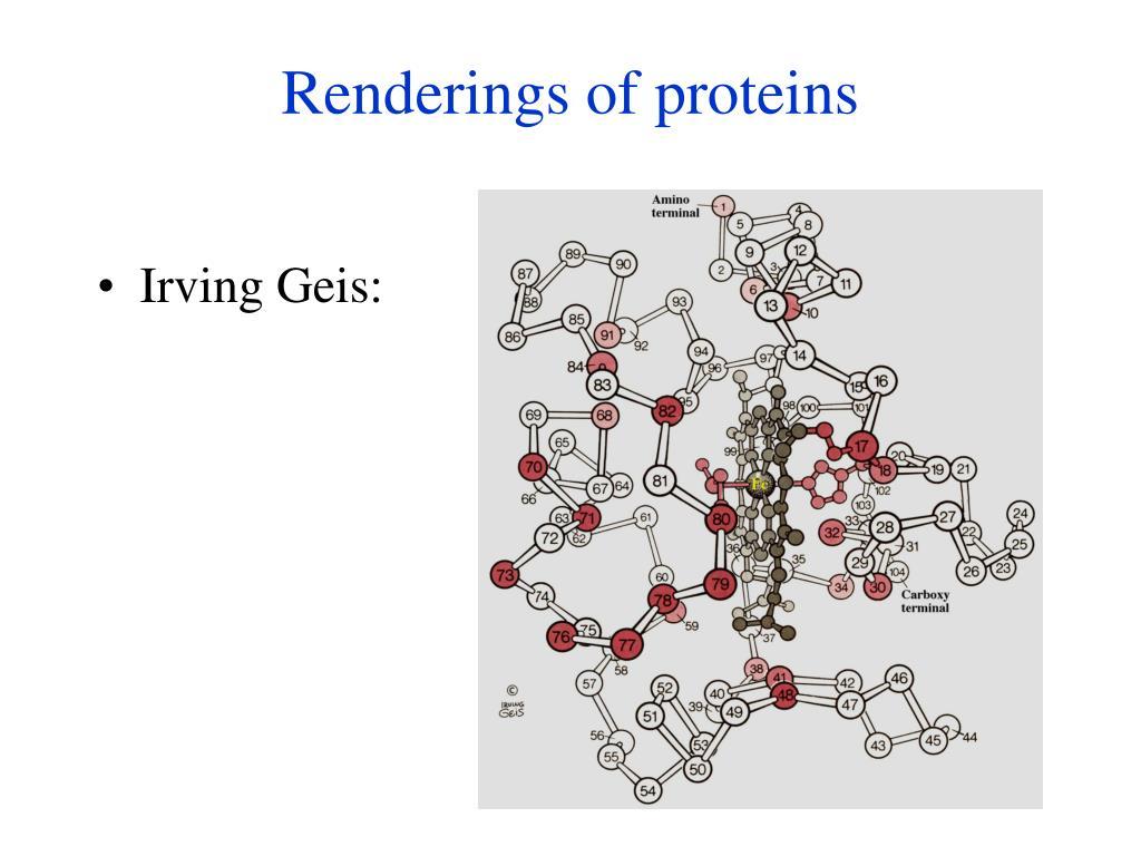 Renderings of proteins