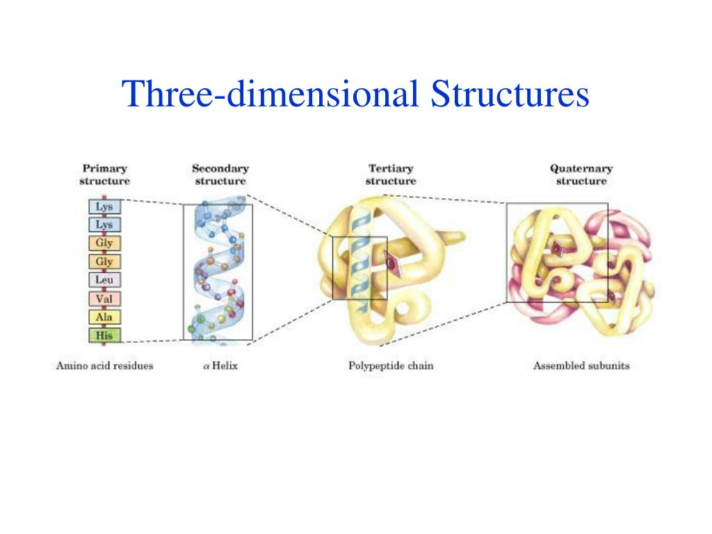 Three-dimensional Structures