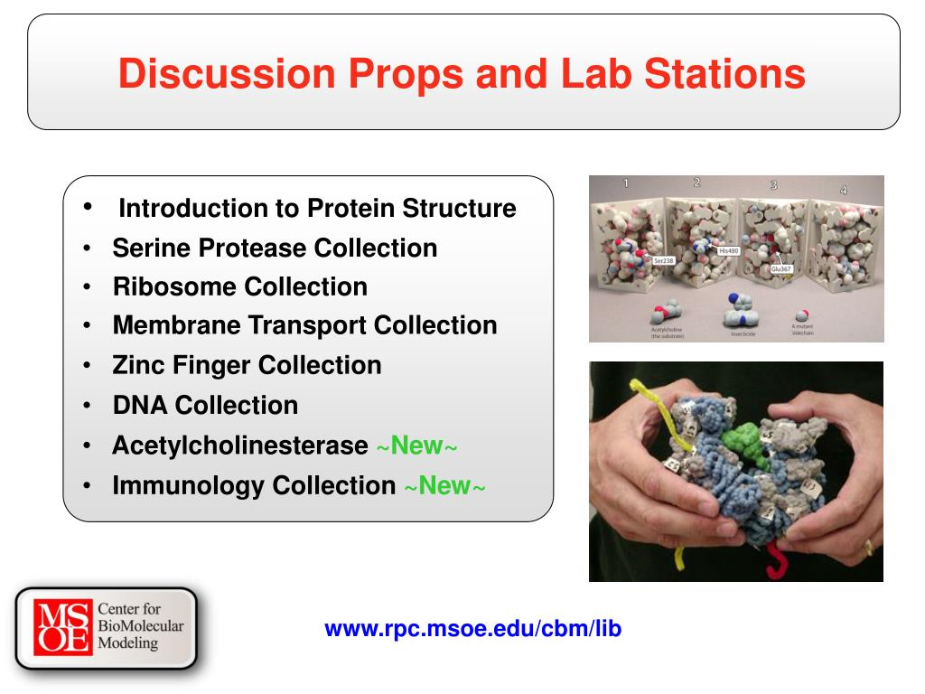 Discussion Props and Lab Stations