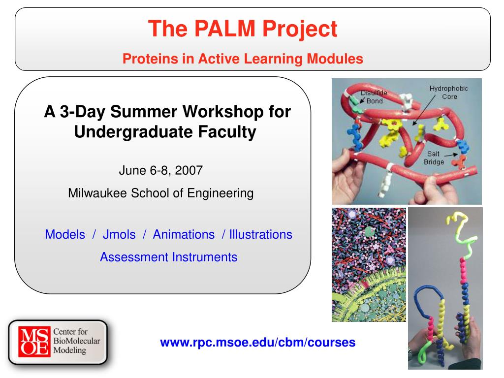 The PALM Project