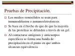 pruebas de precipitaci n1