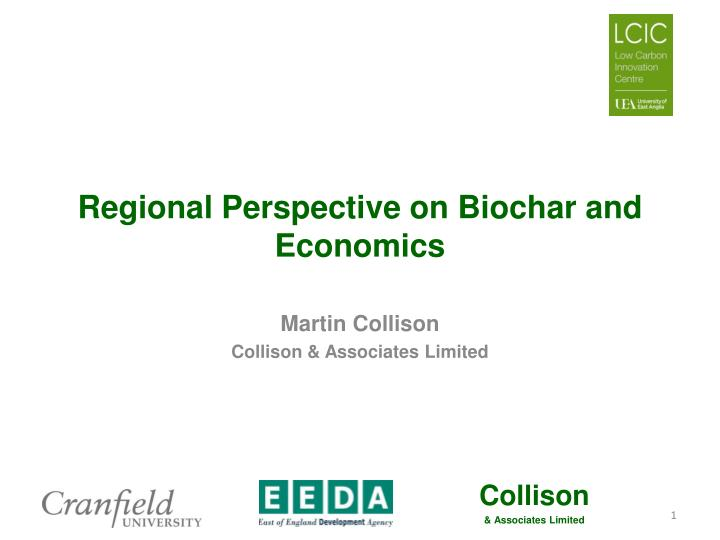 regional perspective on biochar and economics n.