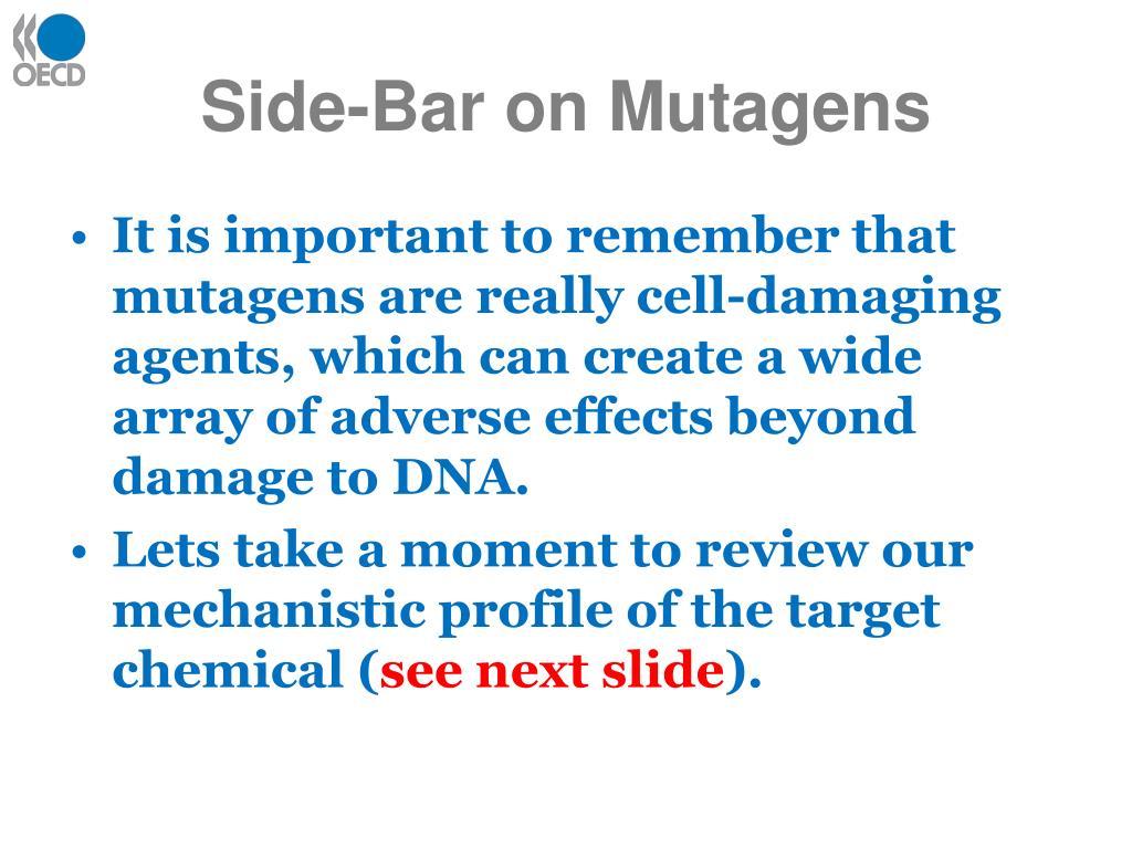Side-Bar on Mutagens