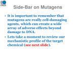 side bar on mutagens
