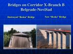 bridges on corridor x branch b belgrade novisad