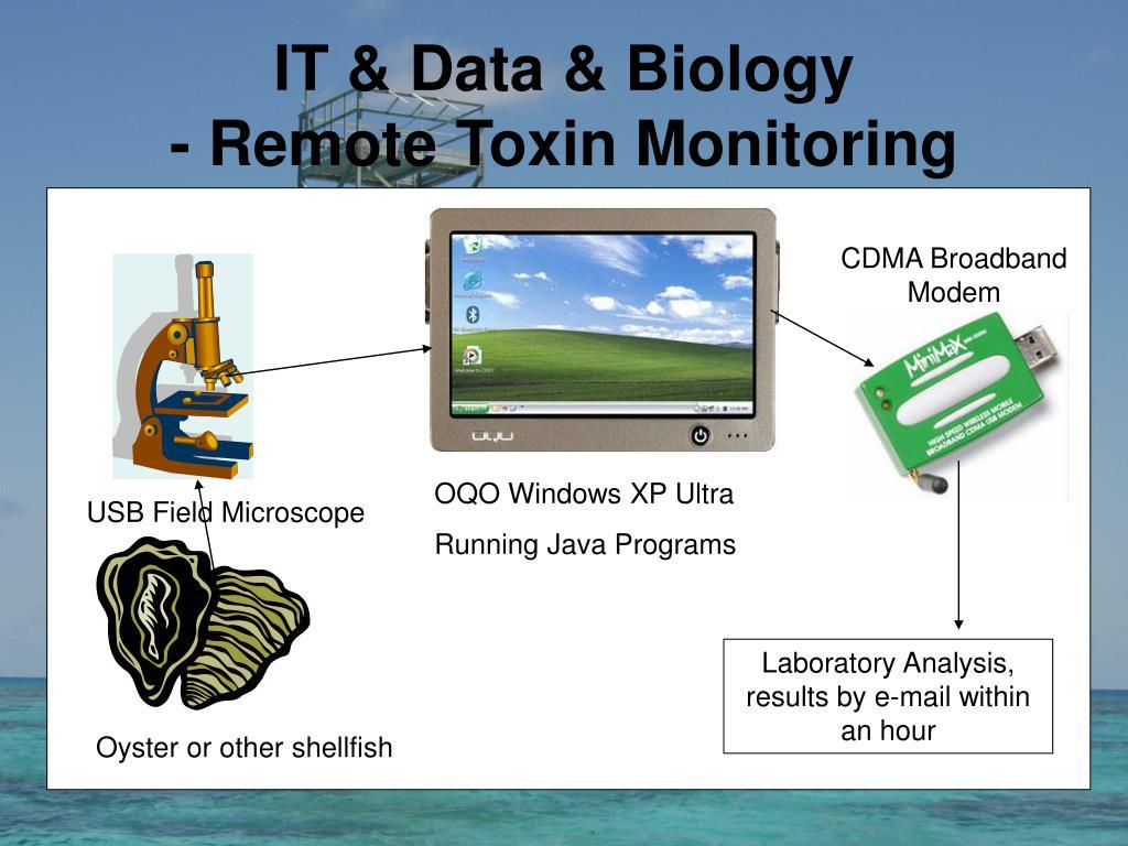 IT & Data & Biology