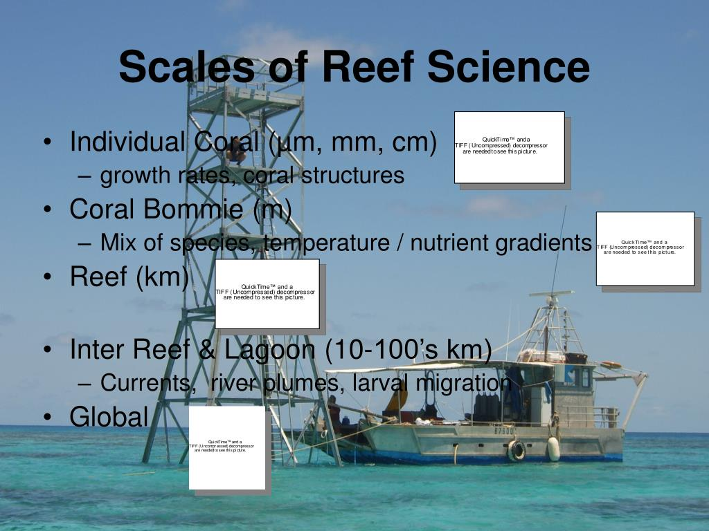 Scales of Reef Science