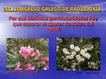 vii congreso galego de radioloxia14