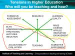 tensions in higher education who will you be teaching and how