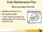 daily maintenance plan