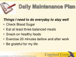 daily maintenance plan1