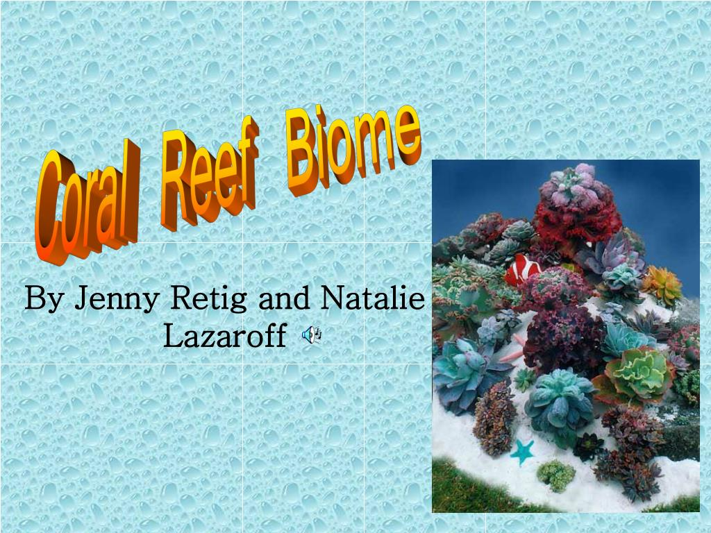by jenny retig and natalie lazaroff