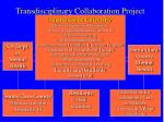 transdisciplinary collaboration project
