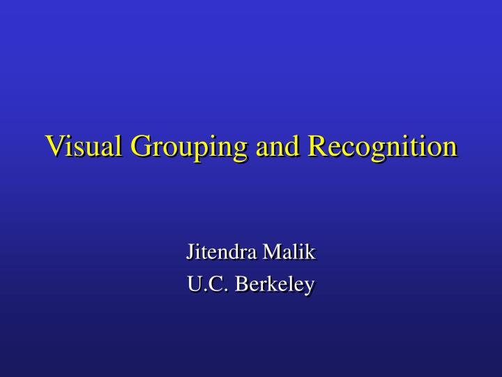 visual grouping and recognition n.