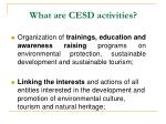 what are cesd activities