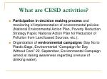 what are cesd activities1