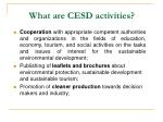 what are cesd activities2
