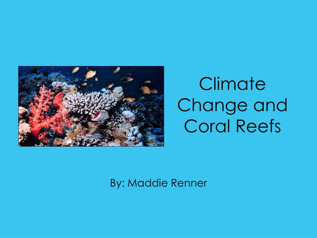 climate change and coral reefs l.