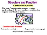 conduction system part 2