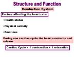 conduction system part 3