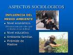 aspectos sociologicos