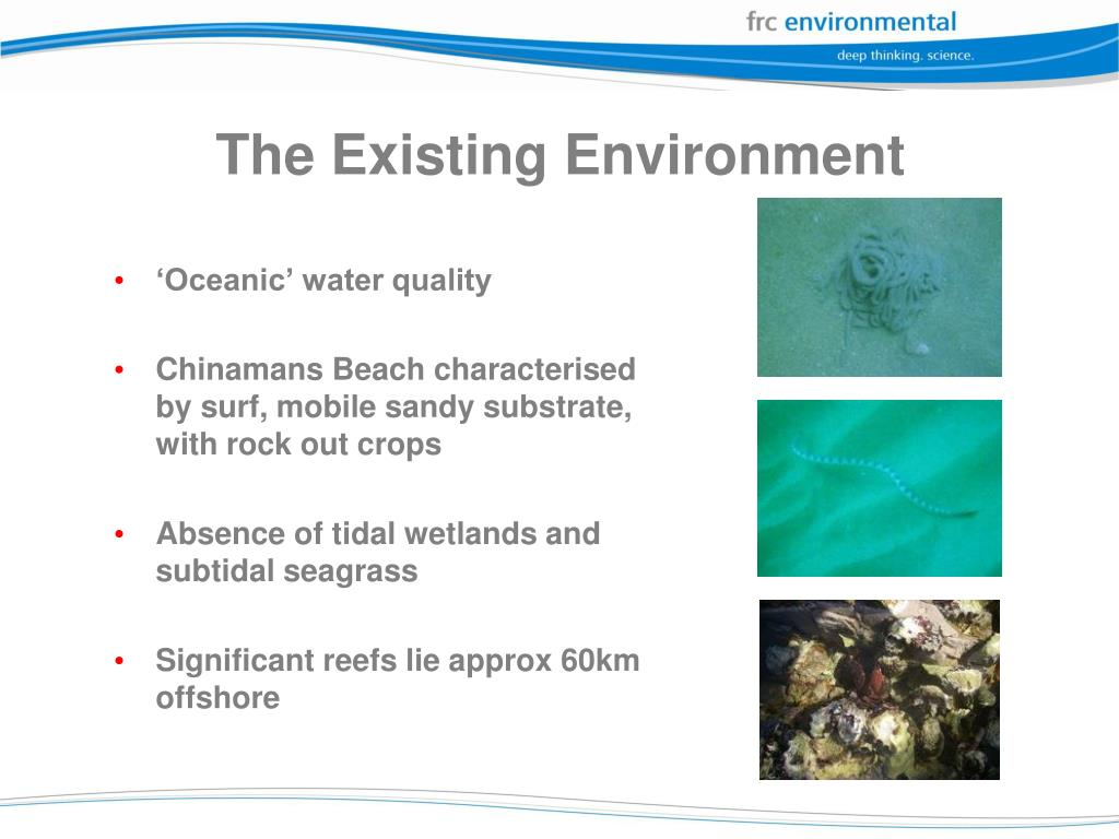 The Existing Environment