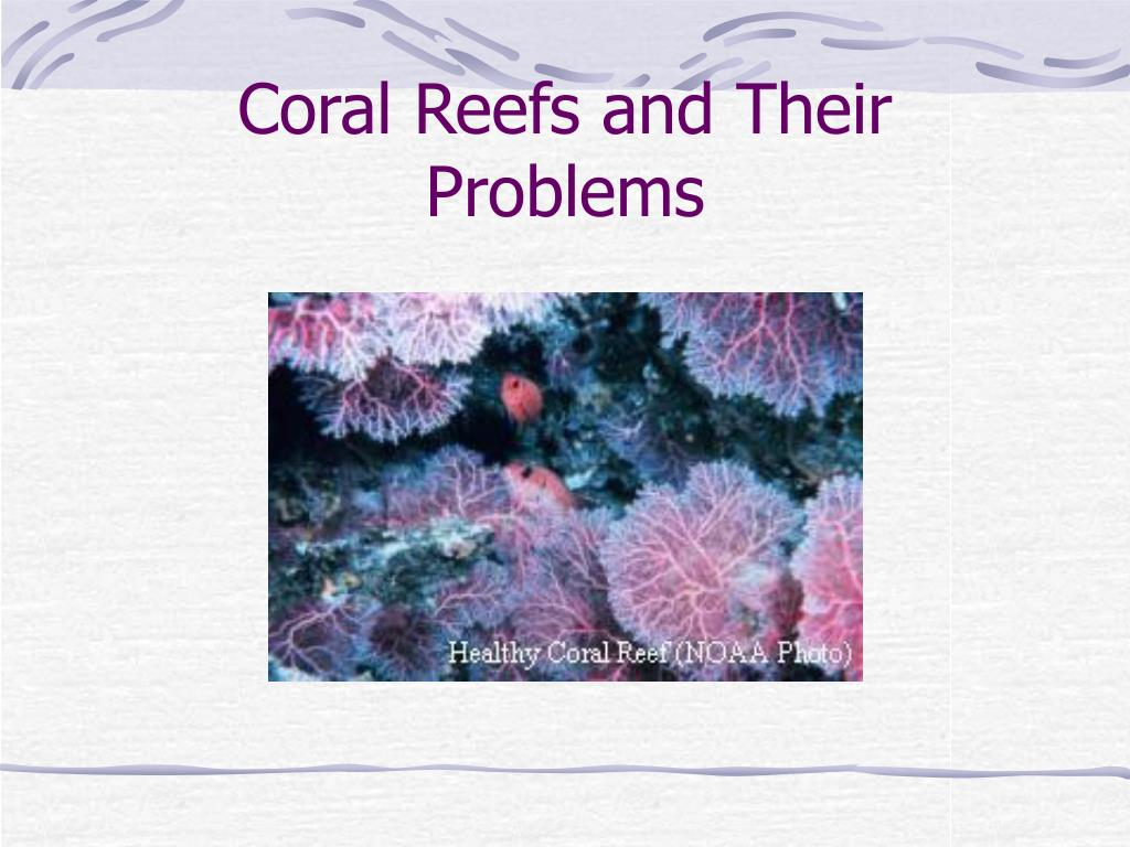coral reefs and their problems l.