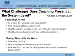 what challenges does coaching present at the system level neufeld roper 2003