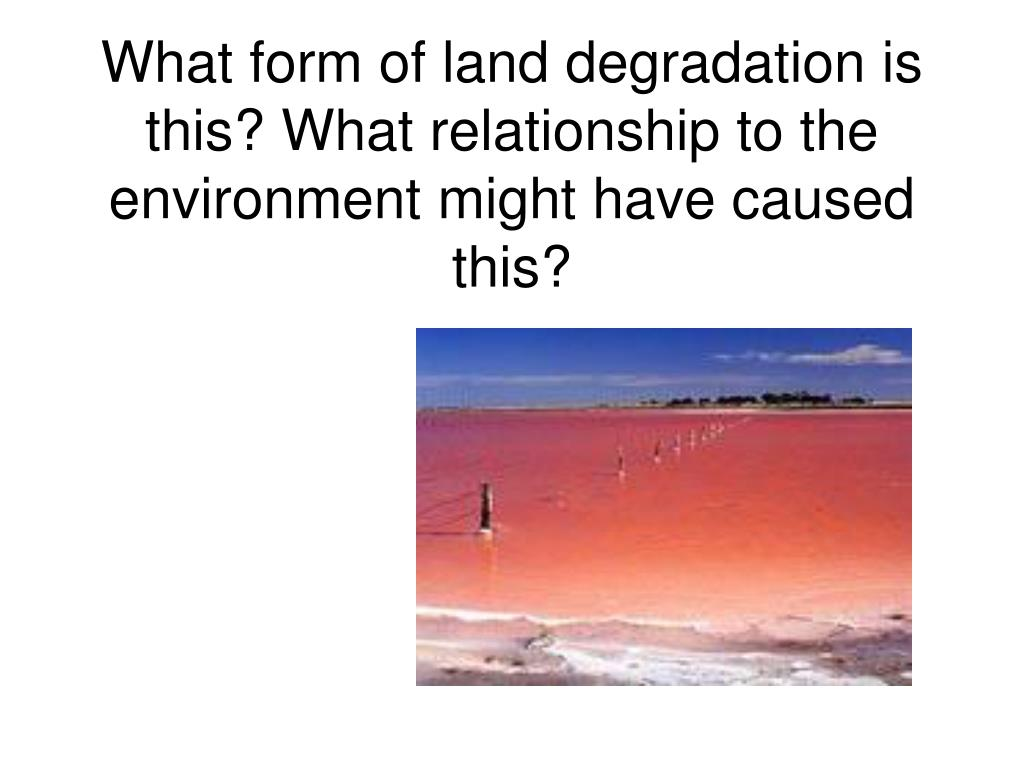 What form of land degradation is this? What relationship to the environment might have caused this?