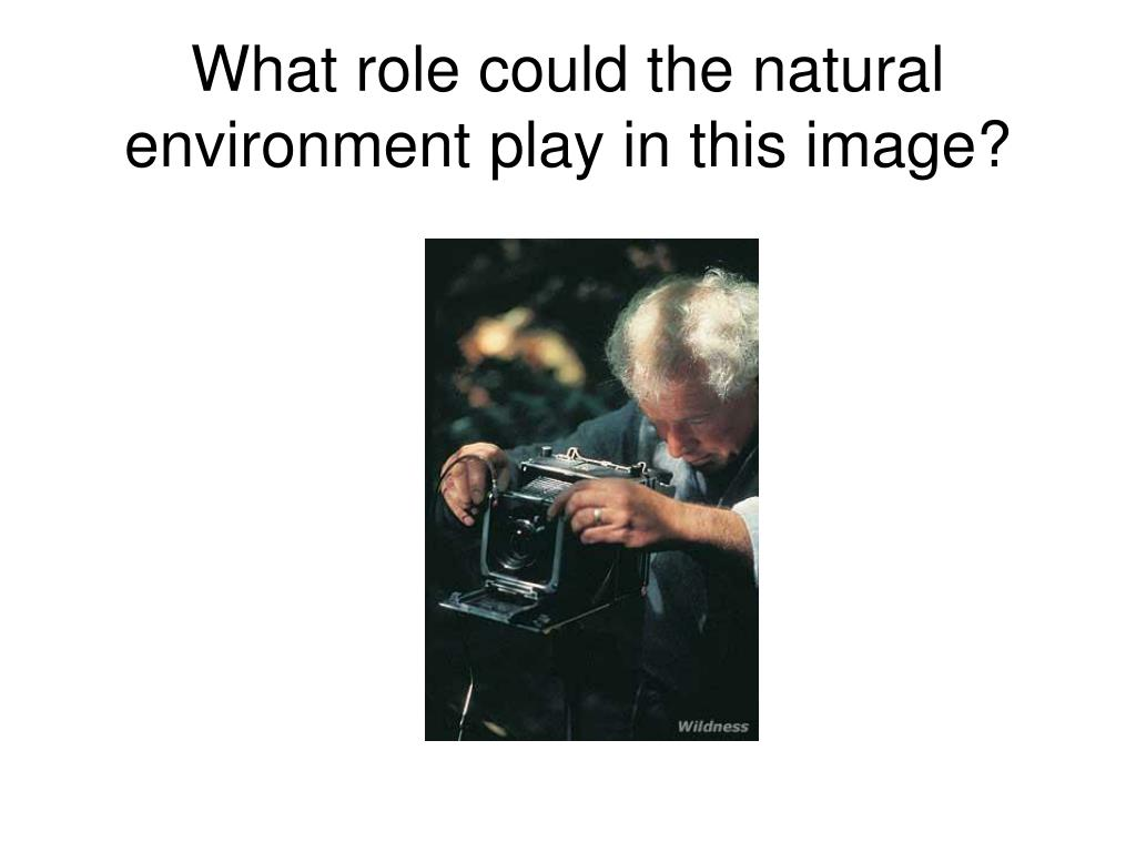 What role could the natural environment play in this image?