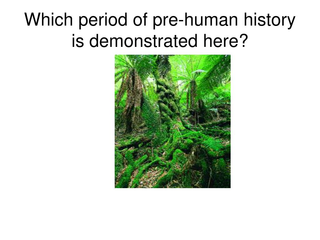 Which period of pre-human history is demonstrated here?