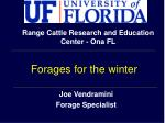 joe vendramini forage specialist