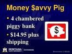 money avvy pig