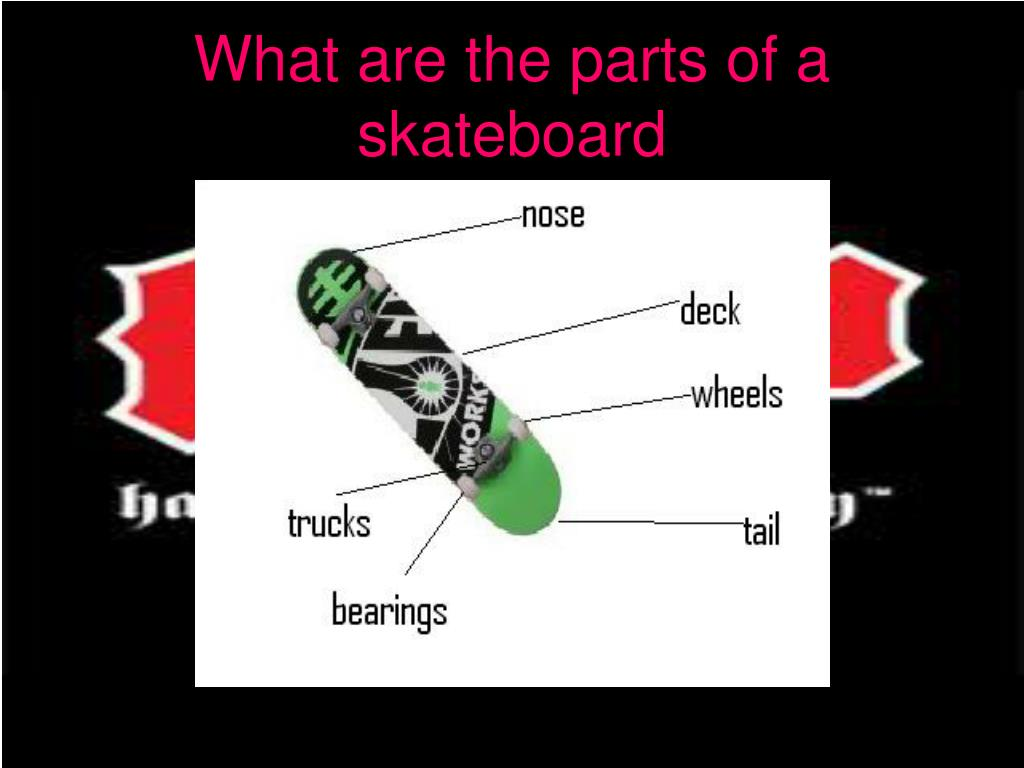 What are the parts of a skateboard