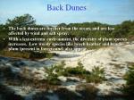 back dunes